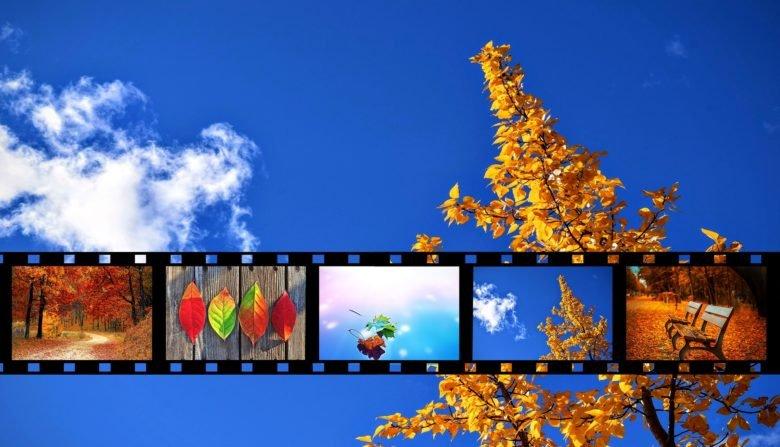 quali film vedere in autunno